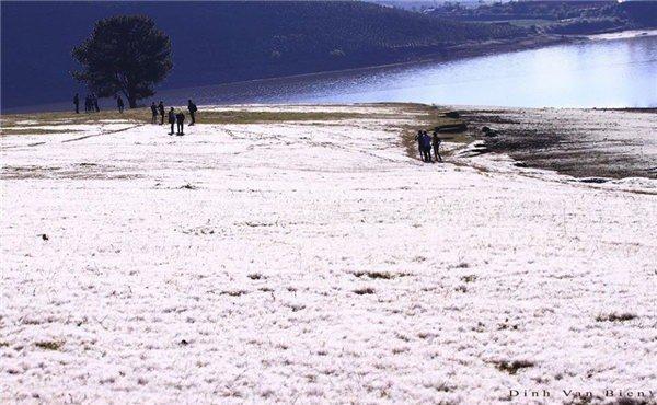 Check in đồi cỏ tuyết Đà Lạt