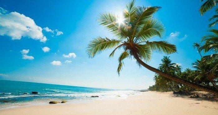 phong cảnh đảo phú quốc tươi đẹp